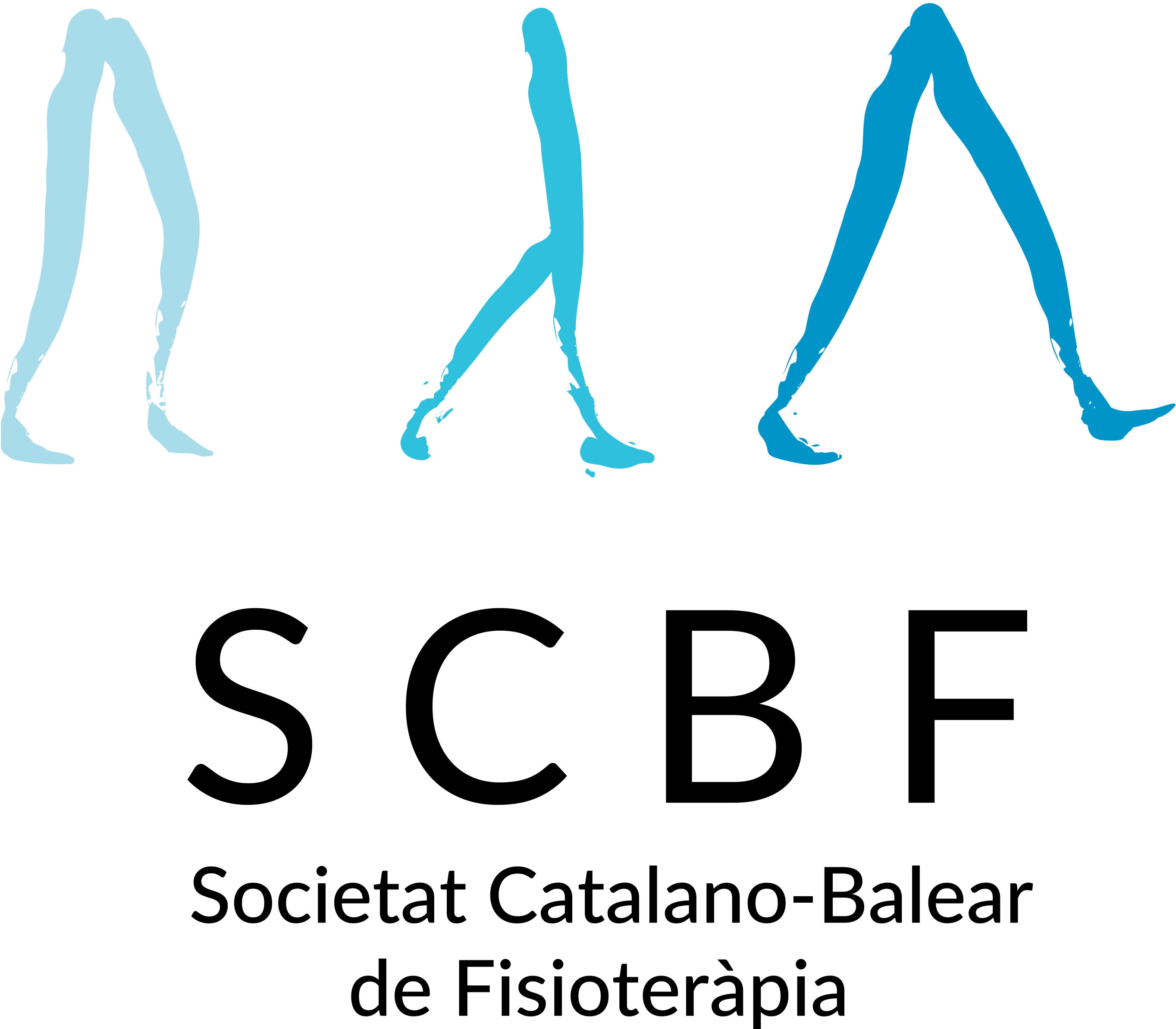 Xlll Congrés de la Societat Catalano Balear de Fisioteràpia